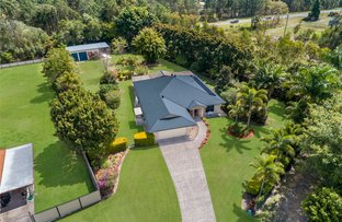 Picture of 4 Wagtail Court, Landsborough QLD 4550