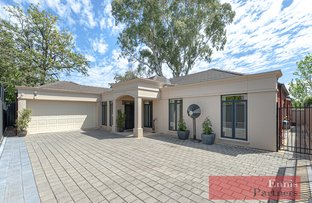 Picture of 29A  Myall Avenue, Kensington Gardens SA 5068