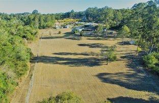 Picture of 176 Bluff Road, Cedar Vale QLD 4285