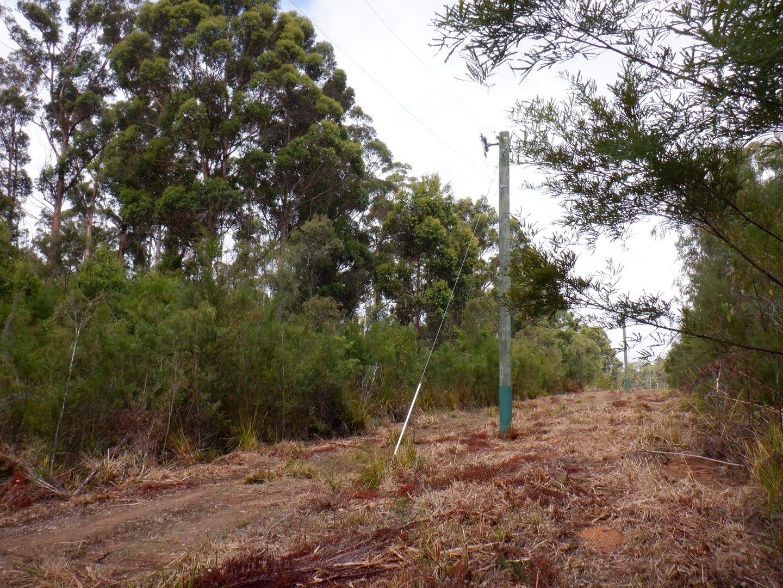 Lot 13041 cnr Moore & Preston Roads, Boorara Brook WA 6262, Image 2