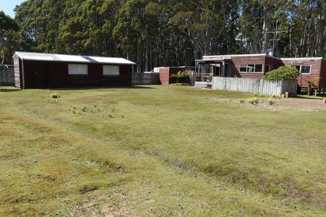 Picture of 253 Riversdale Road, GOLDEN VALLEY TAS 7304