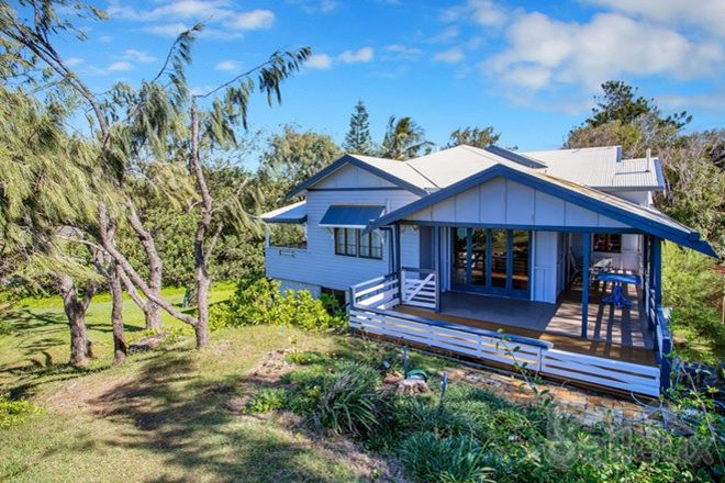 Picture of 31 Gannet Street, SLADE POINT QLD 4740