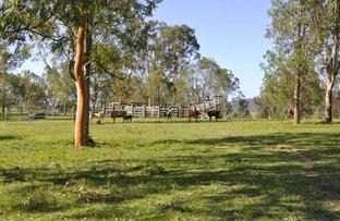 Picture of Lot 2 Grahams Dip Road, Biddaddaba QLD 4275