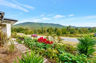 Picture of 38 Roxborough Street, Canungra QLD 4275