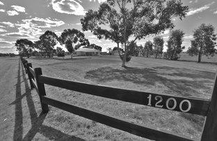 Picture of 1200 Mount Terrick Road, Echuca VIC 3564