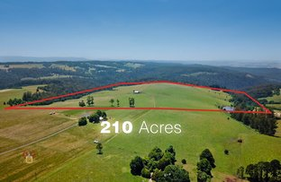 Picture of 80 Orchard Road, Kinglake VIC 3763