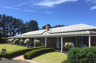 Picture of 15 Gostwyck Road, Uralla NSW 2358