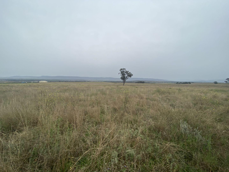 115 Milford Hills Lane, Scone NSW 2337, Image 1