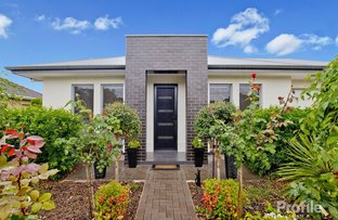 Picture of 10 Autumn Avenue, Lockleys SA 5032