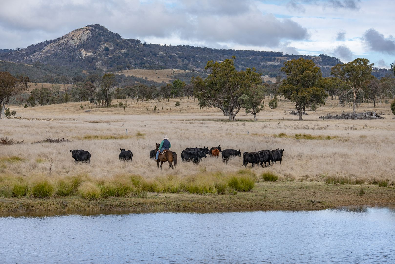 1035 Bruxner Way, Tenterfield NSW 2372, Image 1