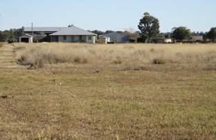 "Picture of 296 ACRES - ""WINDVALE"", Jandowae QLD 4410"