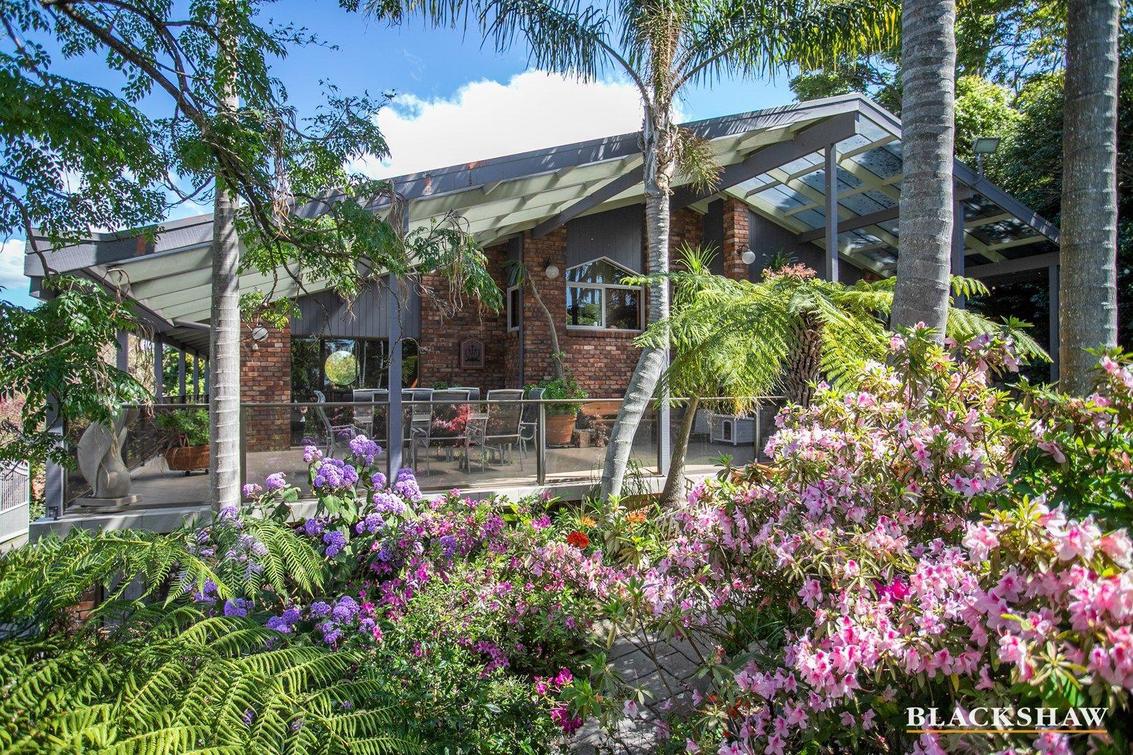 113 Vista Avenue, Catalina NSW 2536, Image 2