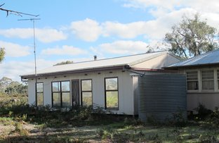 Picture of 166 Alex Pahls Road, Edenhope VIC 3318