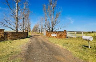 Picture of 15097 New England Highway, Nobby QLD 4360