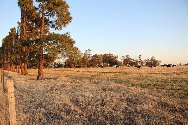 Picture of 835 Bunnaloo Road, MATHOURA NSW 2710
