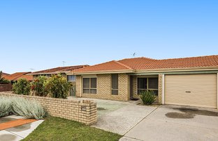 Picture of 220A Hamilton Road, Spearwood WA 6163