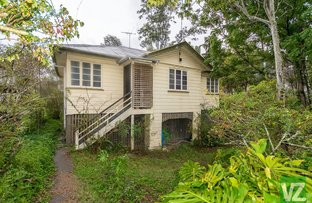 Picture of 40 Armadale Street, St Lucia QLD 4067
