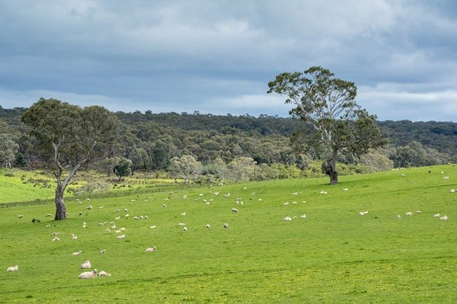 Picture of 3320 Casterton-Edenhope Road, CHETWYND VIC 3312