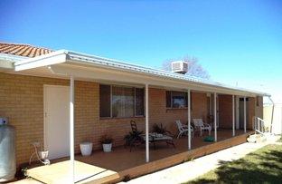 4053 Bingara Rd, Delungra NSW 2403