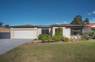 17 Petworth Court, Arundel QLD 4214