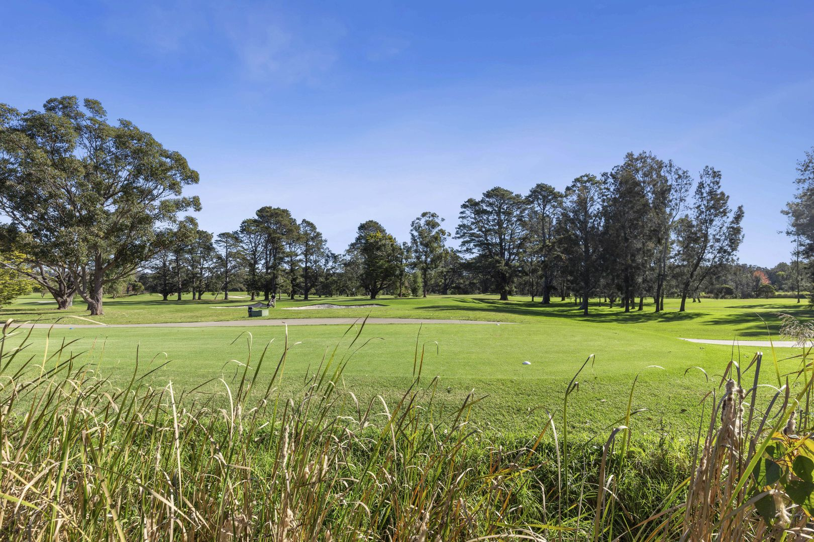 4 Country Club Drive, Catalina NSW 2536, Image 2