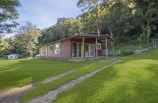 Picture of 125 Boxsell Road, Limpinwood NSW 2484