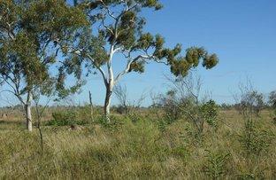 'Elis', Muttaburra QLD 4732