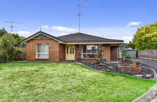 Picture of 7 Montrose Court, Mount Gambier SA 5290