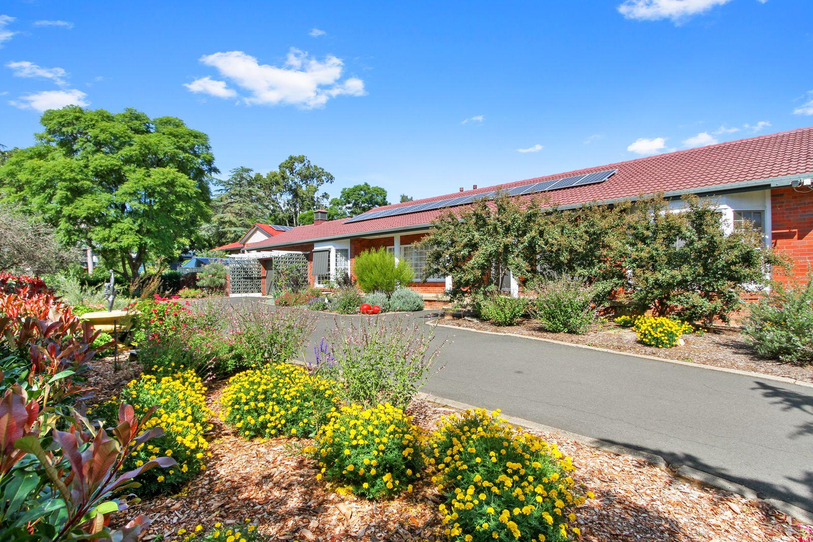 11 Myrene Avenue, Tamworth NSW 2340, Image 0
