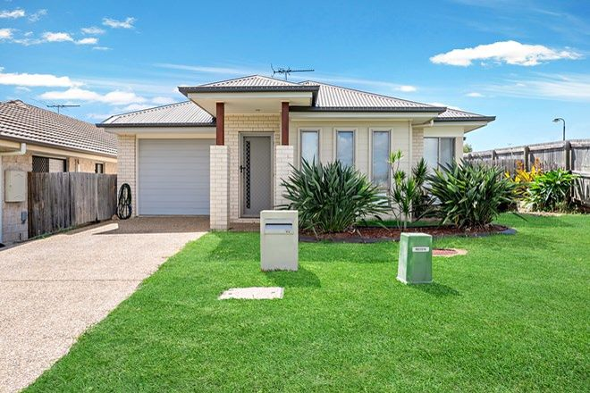 Picture of 17 Elderflower Circuit, GRIFFIN QLD 4503