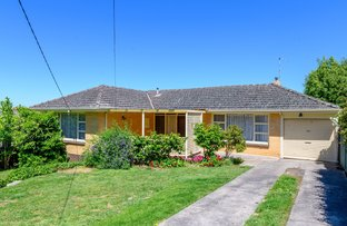 Picture of 11 Hillside Drive, Ballarat North VIC 3350
