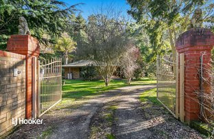 Picture of 292 Hollands Creek Road, Cudlee Creek SA 5232