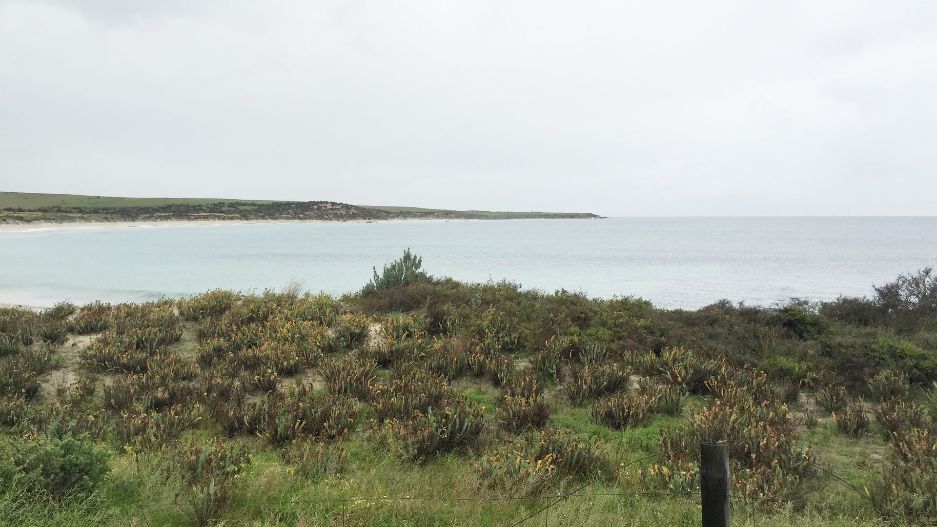 Lot 5 Coast Road, Port Neill SA 5604, Image 1