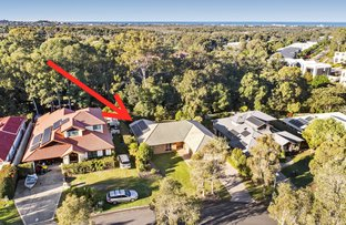 Picture of 27 Forest Ridge Circuit, Peregian Springs QLD 4573