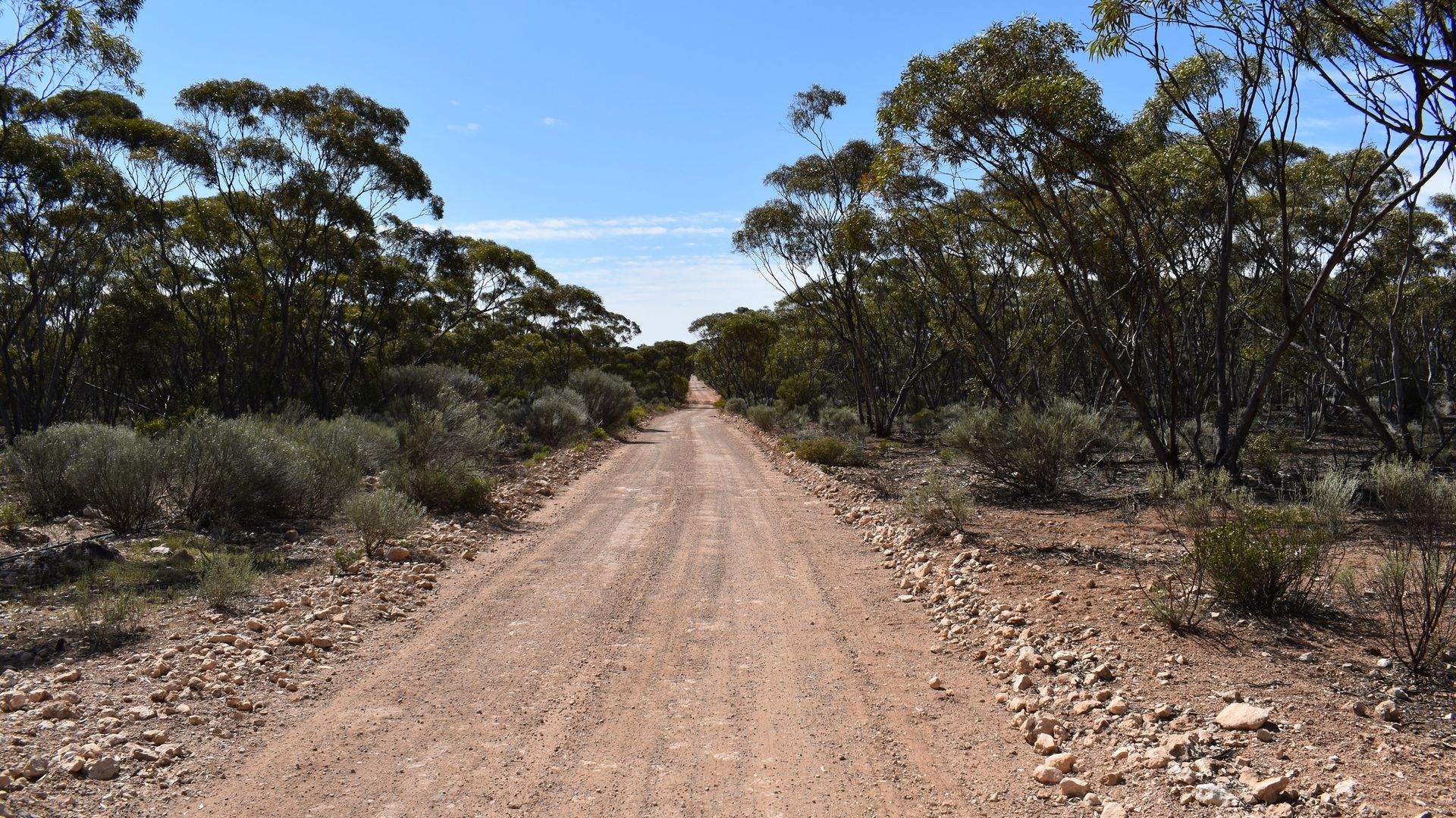 431 Bedrock Road, Fisher SA 5354, Image 1