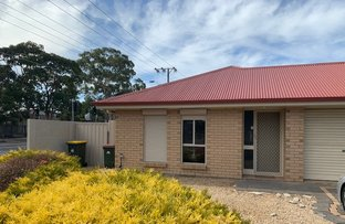 Picture of 15 Everley Avenue, Marion SA 5043