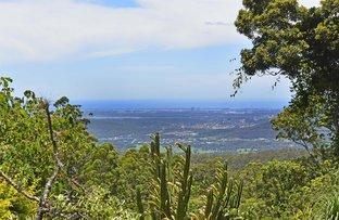 53 Central Avenue, Tamborine Mountain QLD 4272