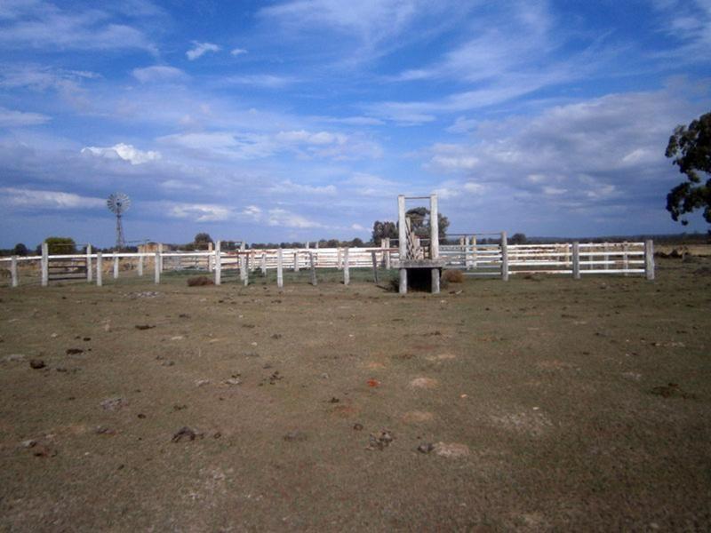 Jandowae QLD 4410, Image 1