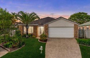 19 Wivenhoe Place, Runcorn QLD 4113
