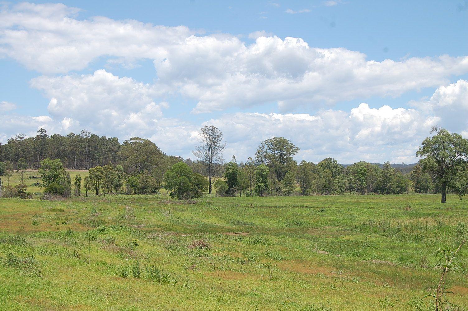 1695 Upper Mongogarie Road, Mongogarie NSW 2470, Image 1