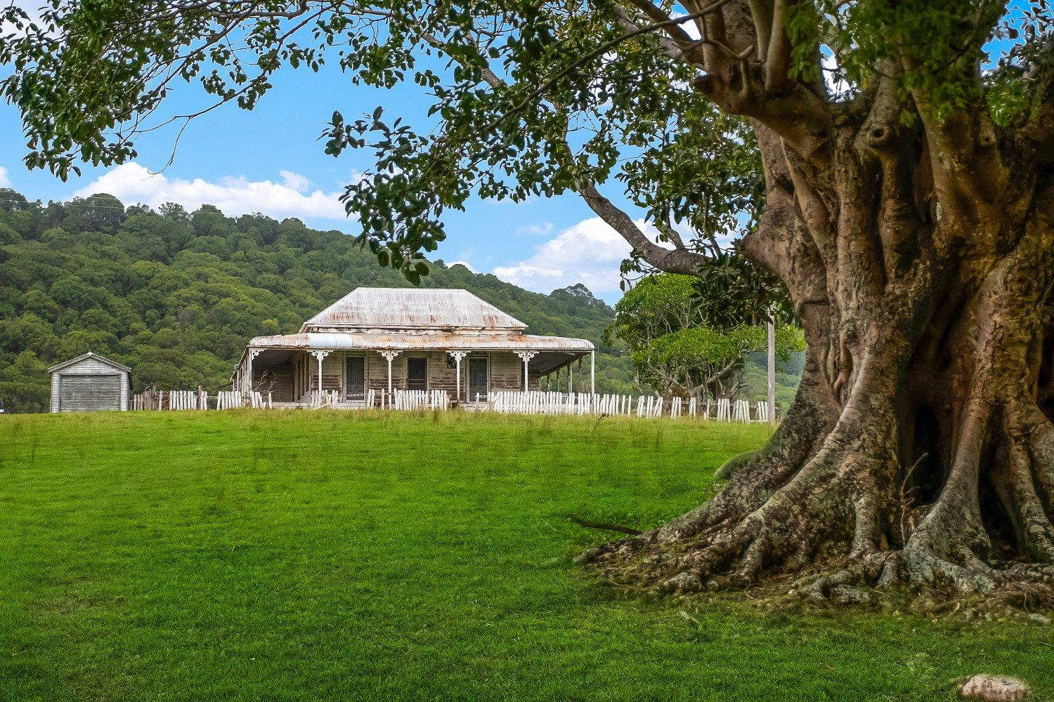 175 Wilsons Creek Road, Mullumbimby NSW 2482, Image 0