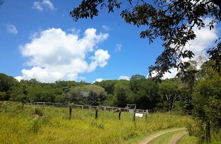 Picture of 1115 East Evelyn Rd, Evelyn QLD 4888