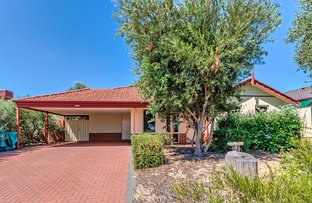 Picture of 41 George Street, Byford WA 6122