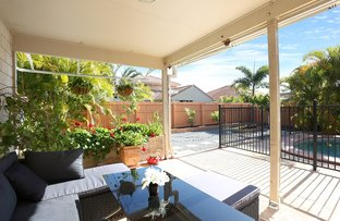 Picture of 17 Petrale Court, Mountain Creek QLD 4557