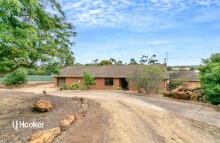 Picture of 8 Rushall Road, Lyndoch SA 5351