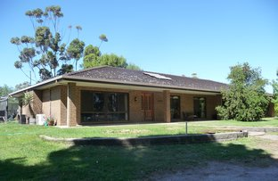 Picture of 391 Zerbsts Road, Minyip VIC 3392