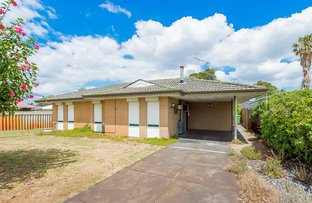 Picture of 31 Embleton Avenue, Embleton WA 6062