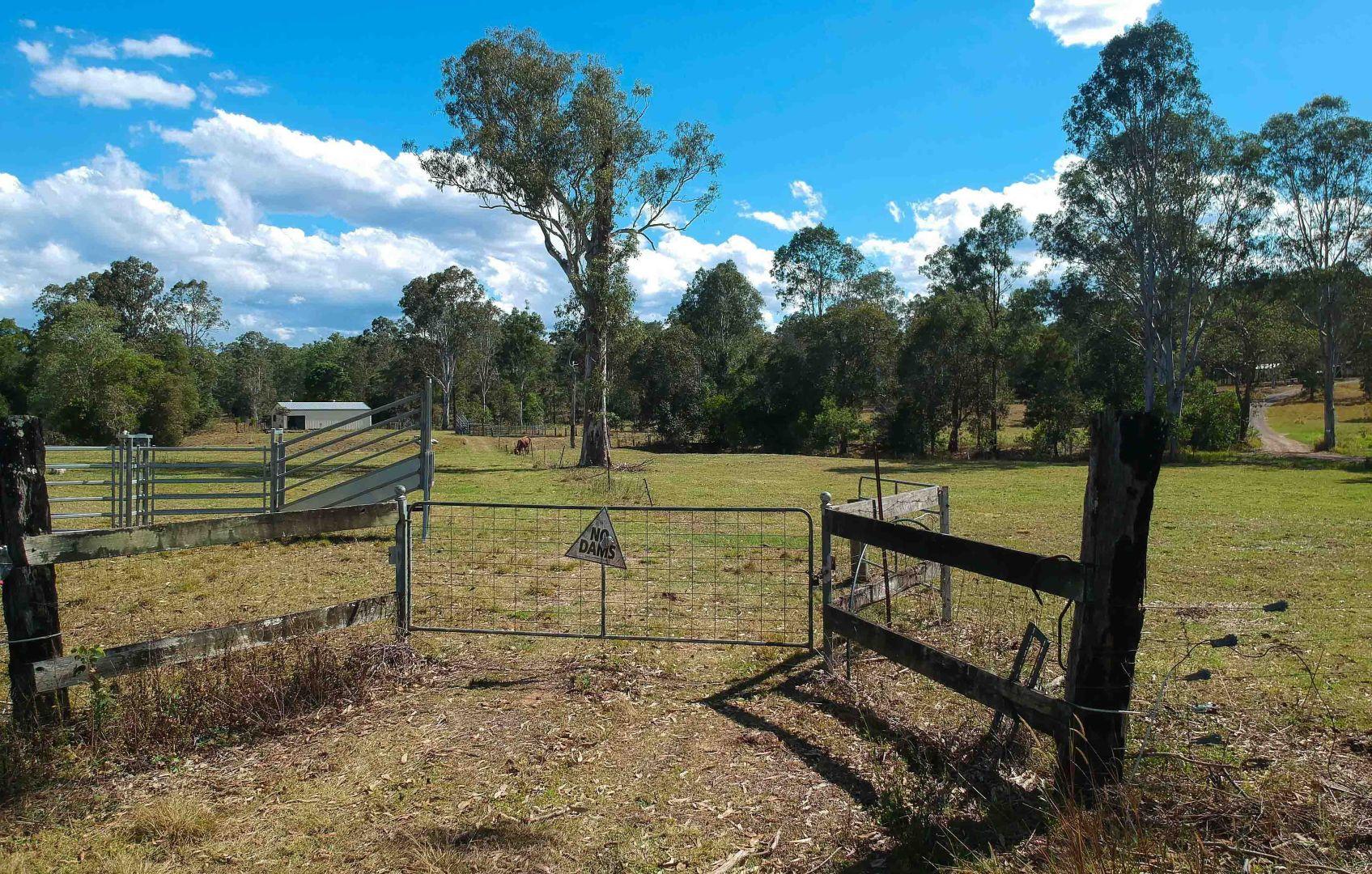366 Skyring Creek Road, Belli Park QLD 4562, Image 2