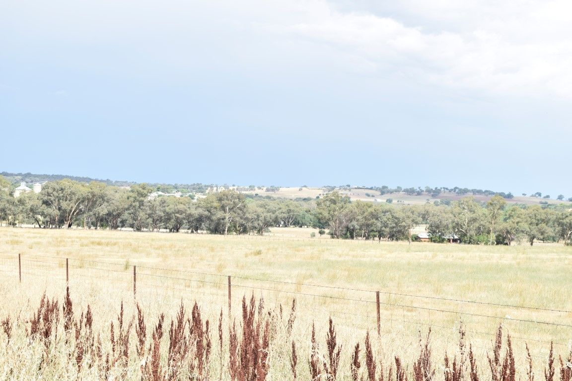 Manganese Road, Grenfell NSW 2810, Image 0