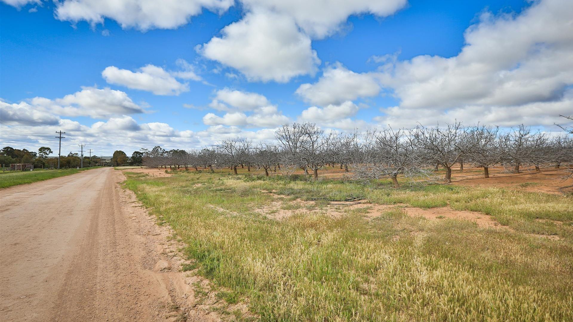 Lot 4 Barnetts Road, Red Cliffs VIC 3496, Image 1
